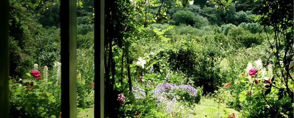 view through the front door at Rough Acre B and B and workshops in Herefordshire
