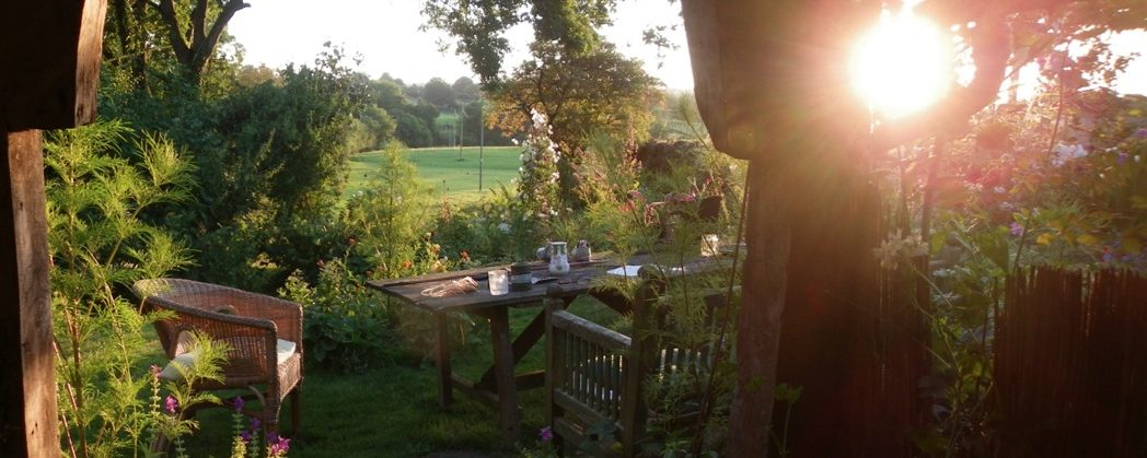 late sun on the garden at rough acre wedding flowers workshops bed and breakfast by caroline ede in herefordshire