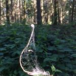 dreams catcher in the woods